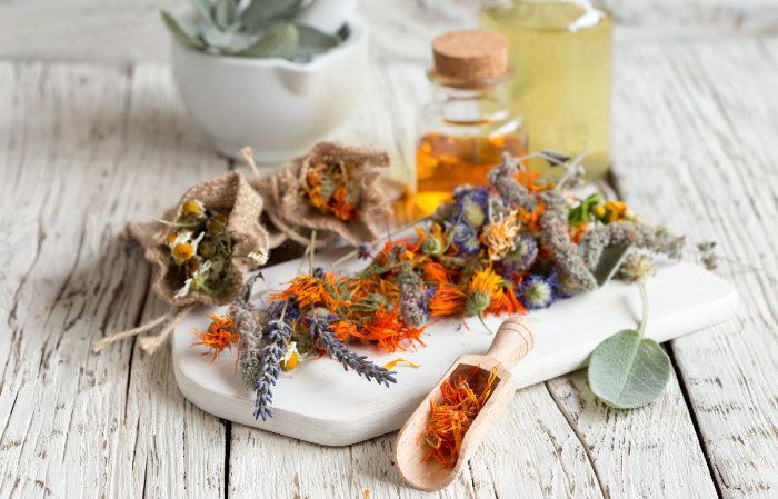 Pflanzenheilkunde Phytotherapie